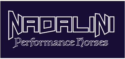 Nadalini Performance Horses | Reining Cow Horse News