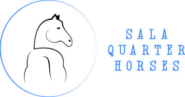 Sala Quarter Horses | Reining Cow Horse News